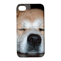 Akita Sleeping Apple iPhone 4/4S Hardshell Case with Stand