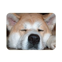 Akita Sleeping Double Sided Flano Blanket (Mini)