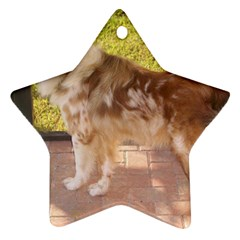 Australian Shepherd Red Merle Full Ornament (Star)