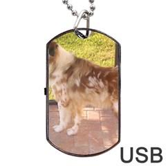 Australian Shepherd Red Merle Full Dog Tag USB Flash (One Side)