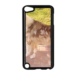 Australian Shepherd Red Merle Full Apple iPod Touch 5 Case (Black)