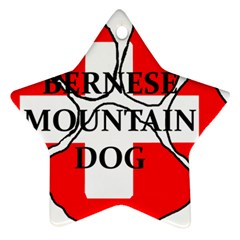 Ber Mt Dog Name Paw Switzerland Flag Star Ornament (Two Sides)