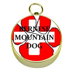 Ber Mt Dog Name Paw Switzerland Flag Gold Compasses