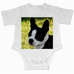 Boston Terrier Puppy Infant Creepers