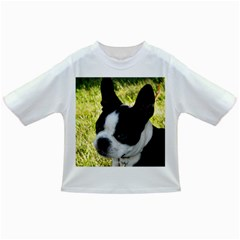 Boston Terrier Puppy Infant/Toddler T-Shirts