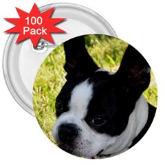Boston Terrier Puppy 3  Buttons (100 pack)