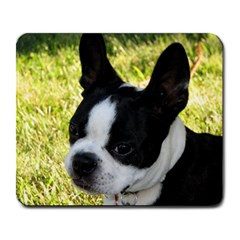 Boston Terrier Puppy Large Mousepads