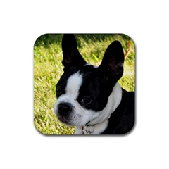 Boston Terrier Puppy Rubber Square Coaster (4 pack)