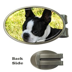 Boston Terrier Puppy Money Clips (Oval)
