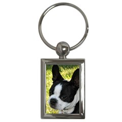 Boston Terrier Puppy Key Chains (Rectangle)