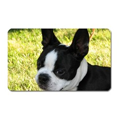 Boston Terrier Puppy Magnet (Rectangular)