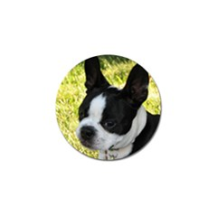 Boston Terrier Puppy Golf Ball Marker