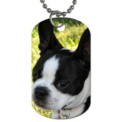 Boston Terrier Puppy Dog Tag (Two Sides)