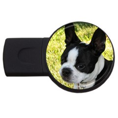 Boston Terrier Puppy USB Flash Drive Round (2 GB)