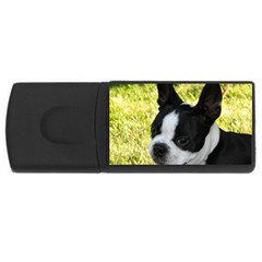 Boston Terrier Puppy USB Flash Drive Rectangular (4 GB)