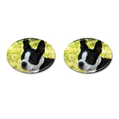 Boston Terrier Puppy Cufflinks (Oval)