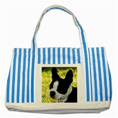 Boston Terrier Puppy Striped Blue Tote Bag