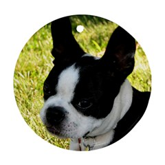 Boston Terrier Puppy Round Ornament (Two Sides)