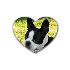 Boston Terrier Puppy Rubber Coaster (Heart)