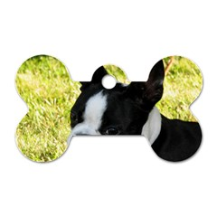 Boston Terrier Puppy Dog Tag Bone (Two Sides)