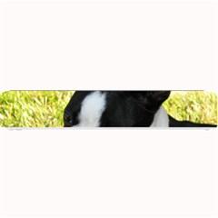 Boston Terrier Puppy Small Bar Mats