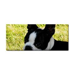 Boston Terrier Puppy Cosmetic Storage Cases
