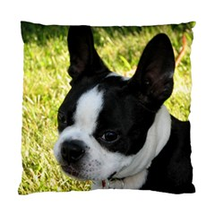 Boston Terrier Puppy Standard Cushion Case (One Side)