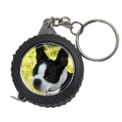 Boston Terrier Puppy Measuring Tapes