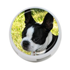 Boston Terrier Puppy 4-Port USB Hub (One Side)