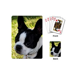 Boston Terrier Puppy Playing Cards (Mini)
