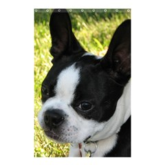 Boston Terrier Puppy Shower Curtain 48  x 72  (Small)
