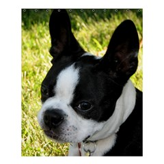 Boston Terrier Puppy Shower Curtain 60  x 72  (Medium)