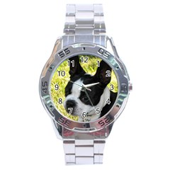 Boston Terrier Puppy Stainless Steel Analogue Watch