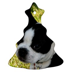 Boston Terrier Puppy Christmas Tree Ornament (2 Sides)