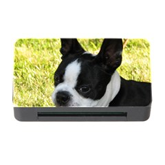 Boston Terrier Puppy Memory Card Reader with CF