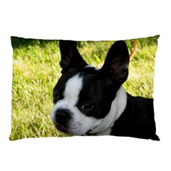 Boston Terrier Puppy Pillow Case (Two Sides)