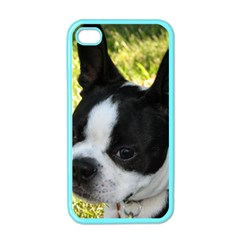 Boston Terrier Puppy Apple iPhone 4 Case (Color)
