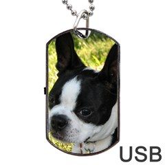 Boston Terrier Puppy Dog Tag USB Flash (One Side)