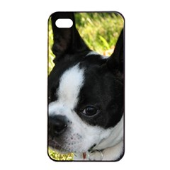 Boston Terrier Puppy Apple iPhone 4/4s Seamless Case (Black)