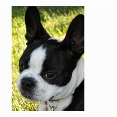 Boston Terrier Puppy Small Garden Flag (Two Sides)