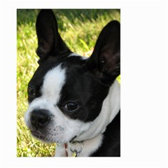 Boston Terrier Puppy Large Garden Flag (Two Sides)