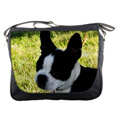 Boston Terrier Puppy Messenger Bags