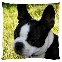 Boston Terrier Puppy Large Cushion Case (One Side)