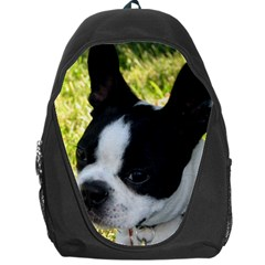 Boston Terrier Puppy Backpack Bag