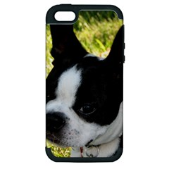 Boston Terrier Puppy Apple iPhone 5 Hardshell Case (PC+Silicone)