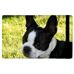 Boston Terrier Puppy Apple iPad 3/4 Flip Case