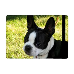 Boston Terrier Puppy Apple iPad Mini Flip Case