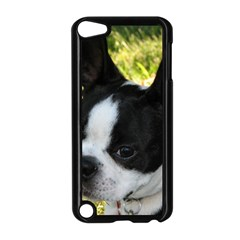 Boston Terrier Puppy Apple iPod Touch 5 Case (Black)