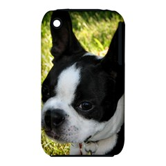 Boston Terrier Puppy iPhone 3S/3GS