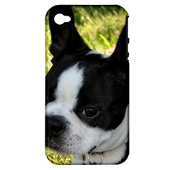 Boston Terrier Puppy Apple iPhone 4/4S Hardshell Case (PC+Silicone)
